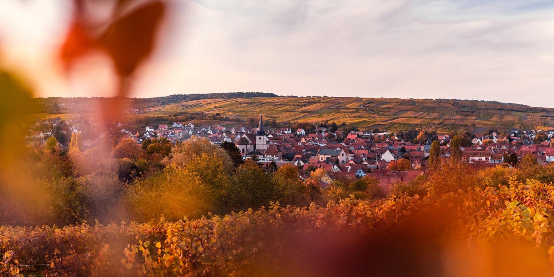 EPF Alsace - Contact